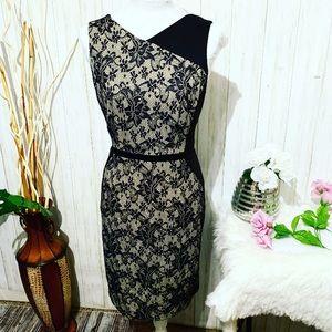 Sandra Darren Black and Lace Bodycon Dress Size 10